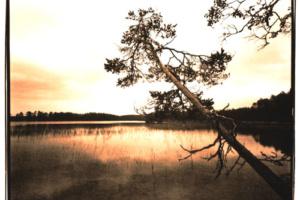 Lithprints von finnischen Landschaften